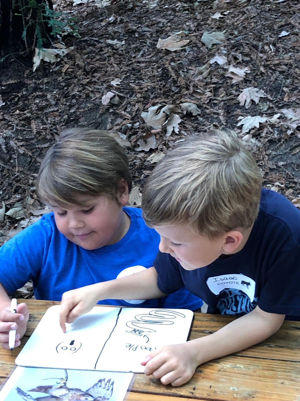 Outdoor Education – 1st Grade Style!