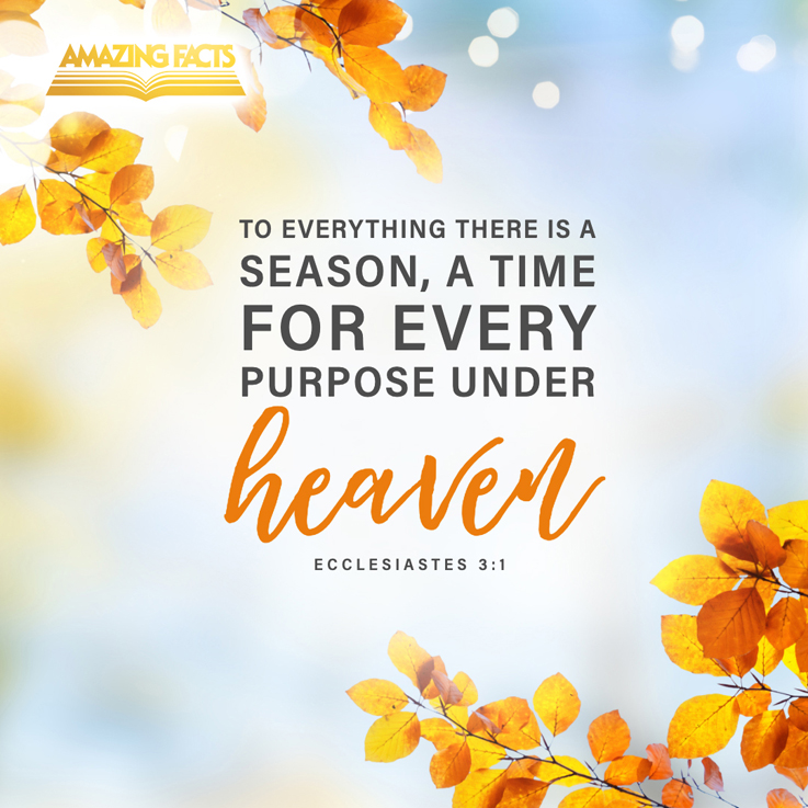"""He has made EVERYTHING beautiful in its time."""